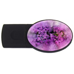 Flowers Spring Art Abstract Nature Usb Flash Drive Oval (2 Gb) by Celenk