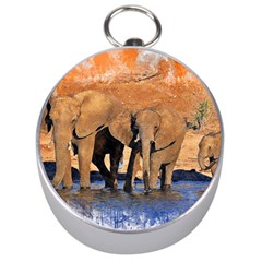 Elephants Animal Art Abstract Silver Compasses by Celenk