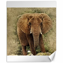 Elephant Animal Art Abstract Canvas 11  X 14   by Celenk