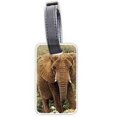 Elephant Animal Art Abstract Luggage Tags (two Sides) by Celenk