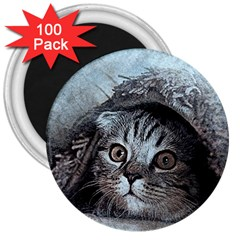 Cat Pet Art Abstract Vintage 3  Magnets (100 Pack)