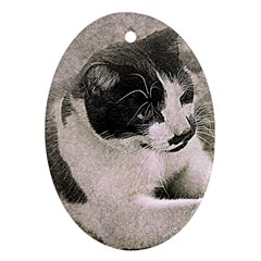 Cat Pet Art Abstract Vintage Ornament (oval)