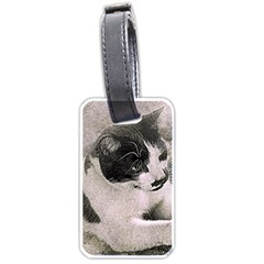 Cat Pet Art Abstract Vintage Luggage Tags (one Side)  by Celenk
