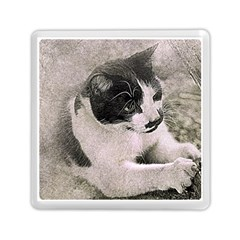 Cat Pet Art Abstract Vintage Memory Card Reader (square)  by Celenk