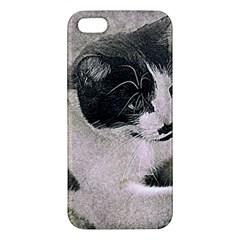 Cat Pet Art Abstract Vintage Iphone 5s/ Se Premium Hardshell Case