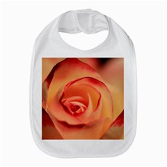Rose Orange Rose Blossom Bloom Amazon Fire Phone by Celenk