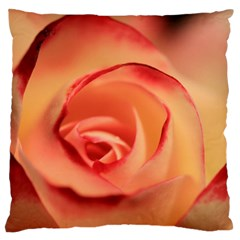 Rose Orange Rose Blossom Bloom Standard Flano Cushion Case (two Sides) by Celenk