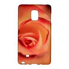 Rose Orange Rose Blossom Bloom Galaxy Note Edge by Celenk