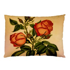 Vintage Flowers Floral Pillow Case (two Sides)