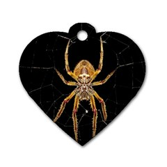 Nsect Macro Spider Colombia Dog Tag Heart (one Side)