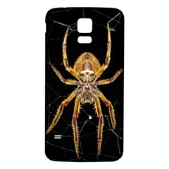 Nsect Macro Spider Colombia Samsung Galaxy S5 Back Case (white) by Celenk