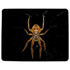 Nsect Macro Spider Colombia Jigsaw Puzzle Photo Stand (rectangular) by Celenk