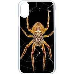 Nsect Macro Spider Colombia Apple Iphone X Seamless Case (white)