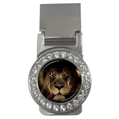 African Lion Mane Close Eyes Money Clips (cz)