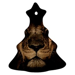 African Lion Mane Close Eyes Ornament (christmas Tree)