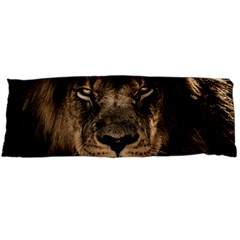 African Lion Mane Close Eyes Body Pillow Case Dakimakura (two Sides) by Celenk