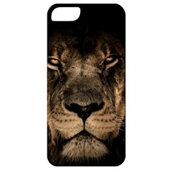 African Lion Mane Close Eyes Apple Iphone 5 Classic Hardshell Case