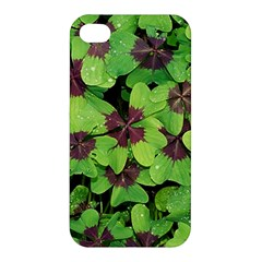 Luck Klee Lucky Clover Vierblattrig Apple Iphone 4/4s Premium Hardshell Case by Celenk