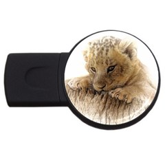Lion Cub Close Cute Eyes Lookout Usb Flash Drive Round (2 Gb) by Celenk