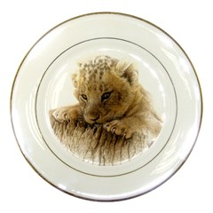 Lion Cub Close Cute Eyes Lookout Porcelain Plates