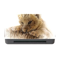 Lion Cub Close Cute Eyes Lookout Memory Card Reader With Cf by Celenk