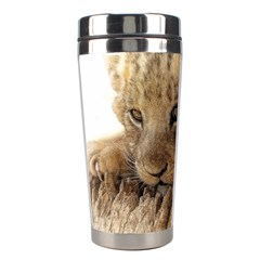 Lion Cub Close Cute Eyes Lookout Stainless Steel Travel Tumblers