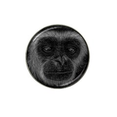 Gibbon Wildlife Indonesia Mammal Hat Clip Ball Marker (4 Pack)