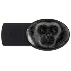 Gibbon Wildlife Indonesia Mammal Usb Flash Drive Oval (4 Gb) by Celenk