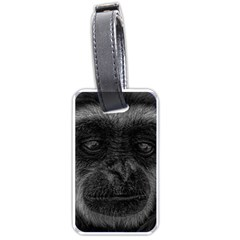 Gibbon Wildlife Indonesia Mammal Luggage Tags (two Sides) by Celenk