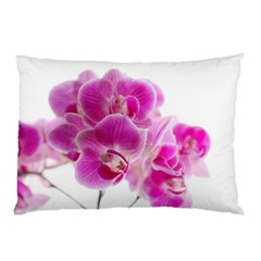Orchid Phaleonopsis Art Plant Pillow Case (two Sides)