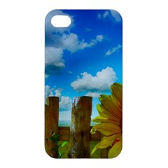 Sunflower Summer Sunny Nature Apple Iphone 4/4s Premium Hardshell Case by Celenk