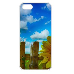 Sunflower Summer Sunny Nature Apple Iphone 5 Seamless Case (white) by Celenk