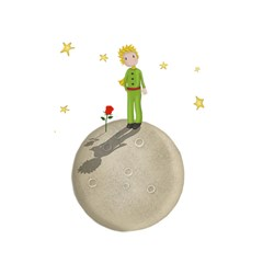 The Little Prince Shower Curtain 48  X 72  (small)