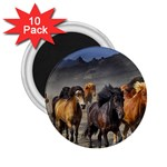 Horses Stampede Nature Running 2.25  Magnets (10 pack)  Front
