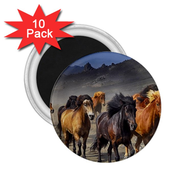 Horses Stampede Nature Running 2.25  Magnets (10 pack)