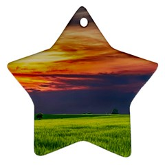 Countryside Landscape Nature Rural Star Ornament (two Sides)