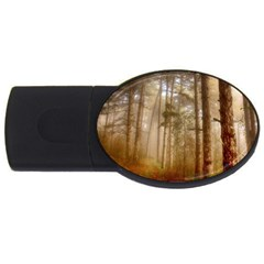 Forest Trees Wood Branc Usb Flash Drive Oval (2 Gb)