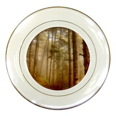 Forest Trees Wood Branc Porcelain Plates by Celenk