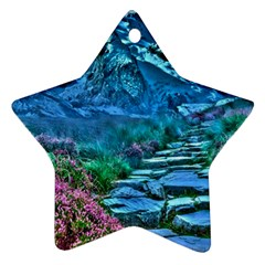 Pathway Nature Landscape Outdoor Star Ornament (two Sides) by Celenk