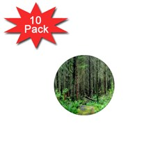 Forest Woods Nature Landscape Tree 1  Mini Magnet (10 Pack)  by Celenk