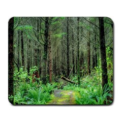 Forest Woods Nature Landscape Tree Large Mousepads by Celenk