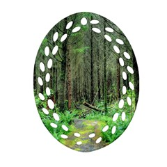 Forest Woods Nature Landscape Tree Ornament (oval Filigree) by Celenk