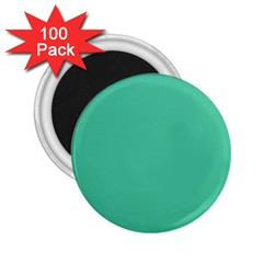 Seafoamy Green 2 25  Magnets (100 Pack)  by snowwhitegirl