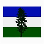 Flag of Cascadia Small Glasses Cloth Front