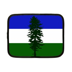 Flag Of Cascadia Netbook Case (small)