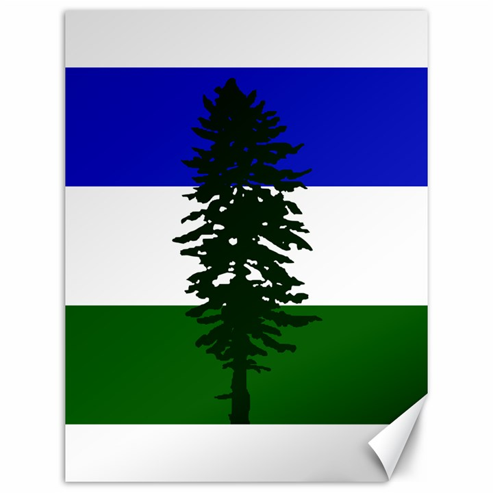 Flag of Cascadia Canvas 12  x 16