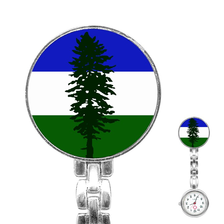 Flag of Cascadia Stainless Steel Nurses Watch