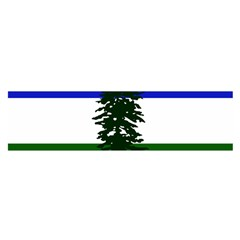 Flag Of Cascadia Satin Scarf (oblong)