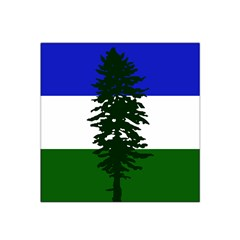 Flag Of Cascadia Satin Bandana Scarf by abbeyz71