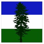 Flag of Cascadia Large Satin Scarf (Square) Front